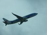 SuneKumaさんが、那覇空港で撮影した日本トランスオーシャン航空 737-8Q3の航空フォト(写真)