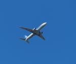 STAR TEAMさんが、新千歳空港で撮影した全日空 737-881の航空フォト(写真)