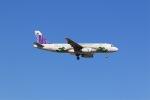 yoshi_350さんが、成田空港で撮影した香港エクスプレス A320-232の航空フォト(写真)