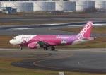 yoshi_350さんが、成田空港で撮影したピーチの航空フォト(写真)