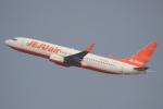 キイロイトリ1005fさんが、関西国際空港で撮影したチェジュ航空 737-8ASの航空フォト(写真)