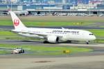 pikazouさんが、羽田空港で撮影した日本航空 787-8 Dreamlinerの航空フォト(写真)