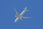 JA1118Dさんが、成田国際空港で撮影した日本航空 787-9の航空フォト(写真)