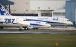ジャガイモさんが、伊丹空港で撮影した全日空 787-8 Dreamlinerの航空フォト(写真)