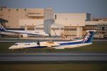 ジャガイモさんが、伊丹空港で撮影したANAウイングス DHC-8-402Q Dash 8の航空フォト(写真)