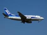 frankさんが、新石垣空港で撮影したANAウイングス 737-5L9の航空フォト(写真)