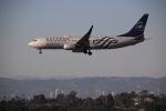 LA TSUTOMUさんが、ロサンゼルス国際空港で撮影したデルタ航空 737-832の航空フォト(写真)