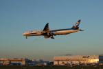 JA1118Dさんが、成田国際空港で撮影した全日空 777-381/ERの航空フォト(写真)