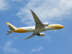おっつんさんが、成田国際空港で撮影したスクート 787-9の航空フォト(写真)