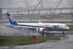 mojioさんが、羽田空港で撮影した全日空 787-8 Dreamlinerの航空フォト(写真)