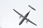 りゅうさんさんが、調布飛行場で撮影した国土交通省 航空局 DHC-8-315Q Dash 8の航空フォト(写真)