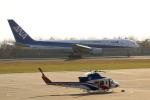 syo12さんが、函館空港で撮影した全日空 767-381の航空フォト(写真)