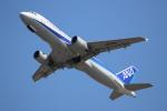 OMAさんが、岩国空港で撮影した全日空 A320-211の航空フォト(写真)