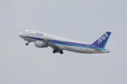 やつはしさんが、中部国際空港で撮影した全日空 A320-211の航空フォト(飛行機 写真・画像)