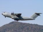 Mame @ TYOさんが、ソウル空軍基地で撮影したマレーシア空軍 A400Mの航空フォト(写真)
