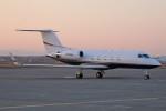 北の熊さんが、新千歳空港で撮影したK2 INVESTMENT FUND LLC G-1159Aの航空フォト(飛行機 写真・画像)