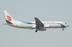 Shotaroさんが、北京首都国際空港で撮影した大連航空 737-86Nの航空フォト(写真)