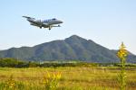 岡南飛行場 - Kounan Airport [OKS/RJBK]で撮影されたグラフィック - Graphicの航空機写真