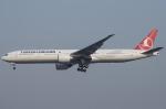 Shotaroさんが、北京首都国際空港で撮影したターキッシュ・エアラインズ 777-3F2/ERの航空フォト(写真)