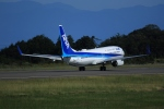 yamatoさんが、静岡空港で撮影した全日空 737-881の航空フォト(写真)