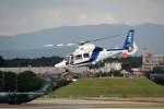 T.Sazenさんが、名古屋飛行場で撮影したオールニッポンヘリコプター AS365N3 Dauphin 2の航空フォト(飛行機 写真・画像)