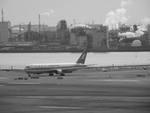 アイスコーヒーさんが、羽田空港で撮影した上海航空 767-36Dの航空フォト(写真)