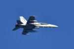 NFファンさんが、厚木飛行場で撮影したアメリカ海兵隊 F/A-18C Hornetの航空フォト(写真)
