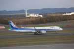 meijeanさんが、新千歳空港で撮影した全日空 A321-211の航空フォト(写真)