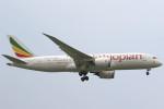 Itami Spotterさんが、スワンナプーム国際空港で撮影したエチオピア航空 787-8 Dreamlinerの航空フォト(写真)