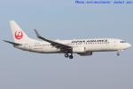 いおりさんが、山口宇部空港で撮影した日本航空 737-846の航空フォト(写真)
