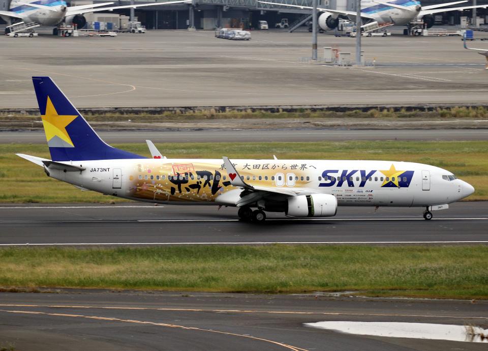 voyagerさんのスカイマーク Boeing 737-800 (JA73NT) 航空フォト