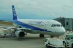 DRAGENSさんが、能登空港で撮影した全日空 A320-211の航空フォト(写真)