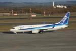 meijeanさんが、新千歳空港で撮影した全日空 737-881の航空フォト(写真)