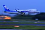 やまさんが、成田国際空港で撮影した全日空 A320-271Nの航空フォト(写真)