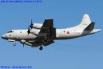 Chofu Spotter Ariaさんが、岐阜基地で撮影した海上自衛隊 OP-3Cの航空フォト(飛行機 写真・画像)