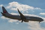 Simeonさんが、伊丹空港で撮影した日本航空 737-846の航空フォト(写真)