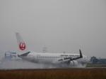 ムネキンさんが、松山空港で撮影した日本航空 737-846の航空フォト(写真)