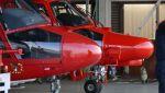 C.Hiranoさんが、八尾空港で撮影した大阪市消防航空隊 AS365N3 Dauphin 2の航空フォト(写真)