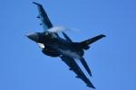 storyさんが、茨城空港で撮影した航空自衛隊 F-2Aの航空フォト(写真)