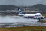Foxfireさんが、成田国際空港で撮影した日本貨物航空 747-8KZF/SCDの航空フォト(写真)