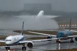 Foxfireさんが、成田国際空港で撮影した全日空 787-9の航空フォト(写真)