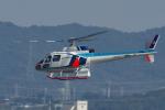 yabyanさんが、名古屋飛行場で撮影した中日本航空 AS350B Ecureuilの航空フォト(写真)