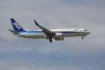 utarou on NRTさんが、那覇空港で撮影した全日空 737-881の航空フォト(写真)