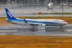 Tomo_lgmさんが、羽田空港で撮影した全日空 737-881の航空フォト(写真)