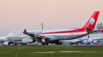 パンダさんが、成田国際空港で撮影した四川航空 A330-343Eの航空フォト(写真)