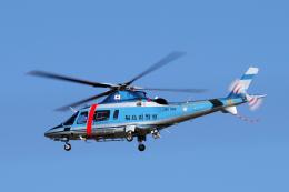 yabyanさんが、名古屋飛行場で撮影した福島県警察 A109E Powerの航空フォト(写真)