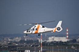 kumagorouさんが、仙台空港で撮影した東邦航空 SA365N1 Dauphin 2の航空フォト(写真)