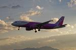 いっち〜@RJFMさんが、宮崎空港で撮影したピーチ A320-214の航空フォト(写真)