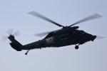ペア ドゥさんが、千歳基地で撮影した航空自衛隊 UH-60Jの航空フォト(写真)