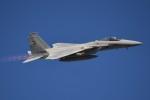 デルタおA330さんが、入間飛行場で撮影した航空自衛隊 F-15J Eagleの航空フォト(写真)